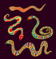 collection bright ethnic snakes isolated on vector image vector image