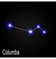 Columba Constellation with Beautiful Bright Stars vector image vector image
