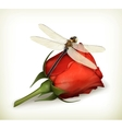 Dragonfly and rose vector image vector image