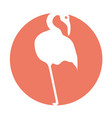 exotic flamingo silhouette icon vector image