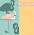 FlamingoStand22 vector image vector image