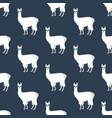 llama in cateye glasses seamless pattern vector image