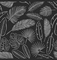 monochrome tropical leaves seamless pattern vector image