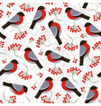 seamless pattern with bullfinches and rowan vector image