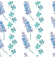 Watercolor pattern with Lavender Lavender and vector image vector image