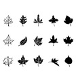 Black Maple leaves silhouette vector image vector image