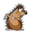 cartoon hedgehog stares vector image vector image