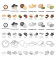 different kinds of nuts cartoon icons in set vector image