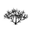 hand drawn tree bush silhouette vector image
