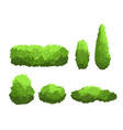 set of garden green bushes and vector image vector image