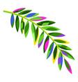 stylized palm leaf vector image