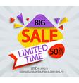 Big sale - limited time banner vector image