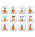 Flower plant in pot colorful icons set vector image vector image