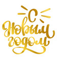 hand lettering words happy new year in russian vector image