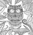 owl coloring book vector image vector image