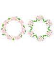 apple tree flowers in wreath - floral frames vector image vector image