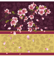 Background with sakura branch Japanese cherry tree vector image vector image