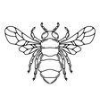 bee in line style isolated on white vector image