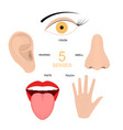 cartoon human senses signs icon set vector image