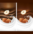 chocolate background with milk splash and hazelnut vector image vector image