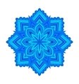 color circular pattern vector image vector image