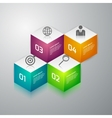 infographics 3d cubes vector image