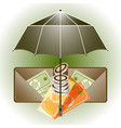 open umbrella wallet and money insurance concept vector image