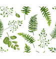 seamless greenery botanical pattern with leaves vector image vector image