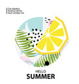 trendy tropic and lemon background vector image