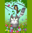 a cat looking to the bird vector image vector image