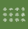 huge and sacred oak tree plant silhouette logo vector image vector image