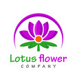 lotus flower logo design vector image