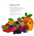 poster juicy fruits and berries vector image vector image