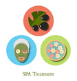 SPA treatment Icons Set vector image vector image