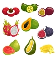 Tropical and exotic fruits isolated icons vector image vector image