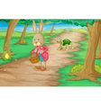 Rabbit in woods vector image
