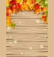 autumn maple leaves effect sun glow vector image vector image