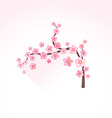 flat abstract blossom sakura branch icon vector image vector image