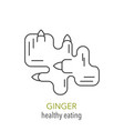 ginger line icon vector image vector image