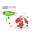 red currant hand drawn watercolor fruit on white vector image vector image
