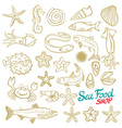 Sea set Stingray jellyfish seaweed fish starfish vector image