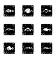 Species of fish icons set grunge style vector image vector image