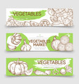 vegetable markets horizontal banners template vector image