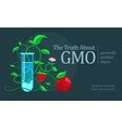 GMO genetically modified vector image vector image