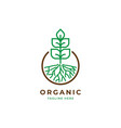 growth plant logo template vector image vector image