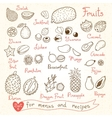Set drawings of fruit for design menus recipes vector image vector image