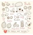 Set drawings of fruit for design menus recipes vector image