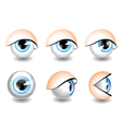 eyes icons vector image vector image