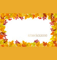 fall nature autumn colorful leaves background vector image