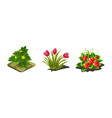 garden plants tulips strawberries game user vector image vector image
